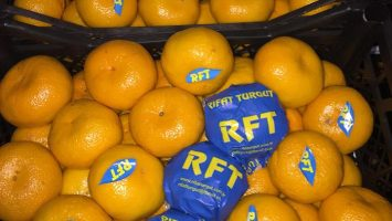 Türkiye'den Ukrayna'ya ihraç edilen ürünler portakal mandalin limon nar üzüm kiraz karpuz hurma sebze meyve